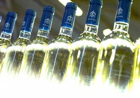 Vinho Verde Casal Garcia na eshopu vín z Portugalska